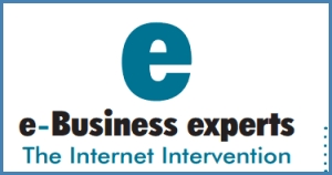 E-Business Experts LLC SEO and online advertising